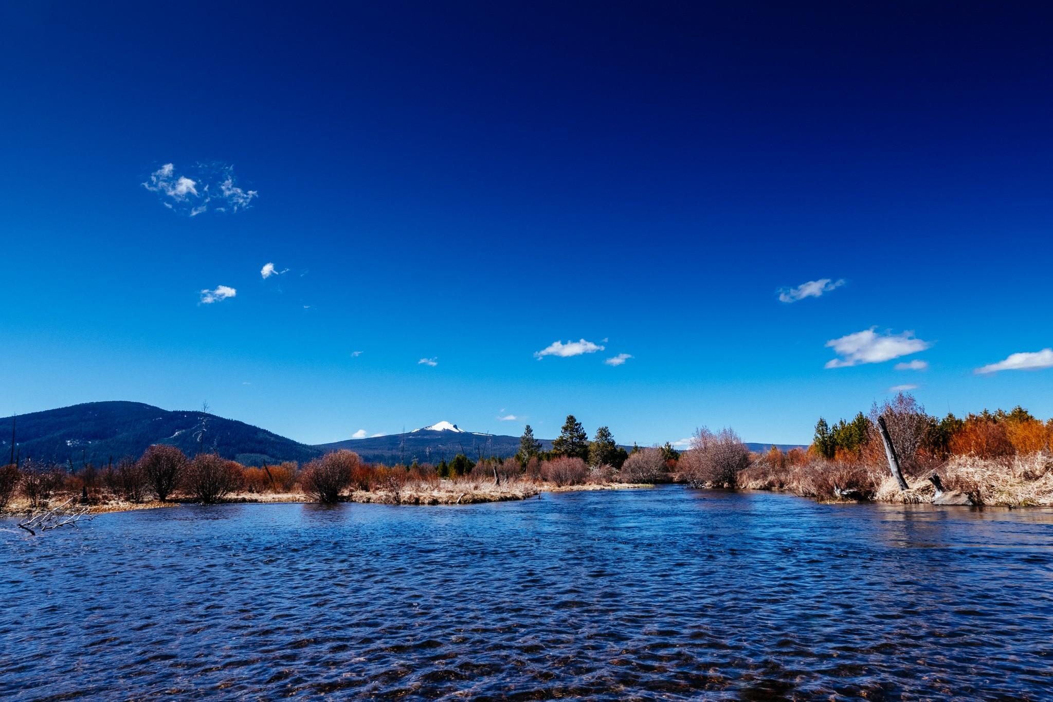 Davis-Lake.jpg