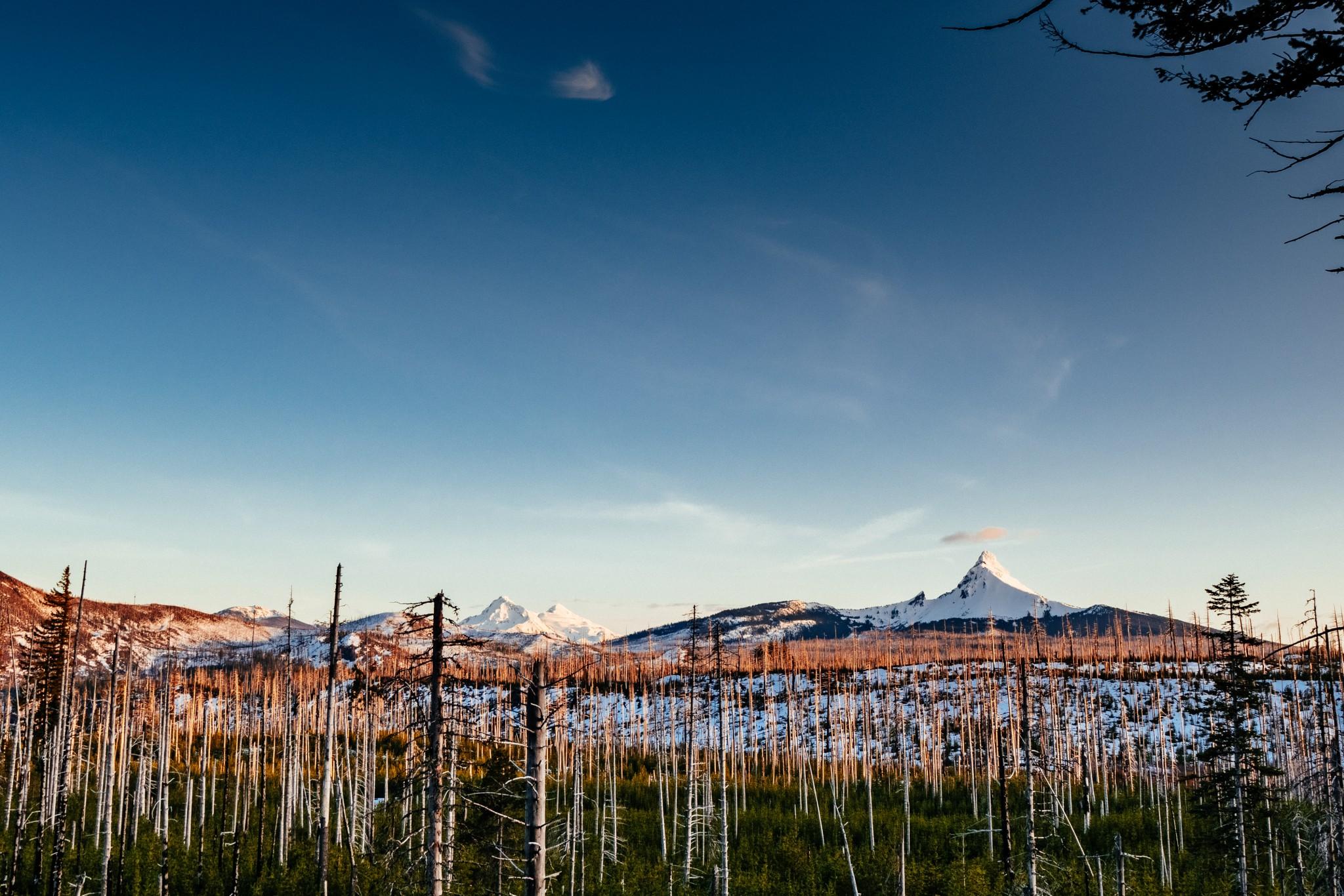 Mt.-Washington-and-Two-Sisters.jpg