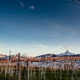 Mt.-Washington-and-Two-Sisters