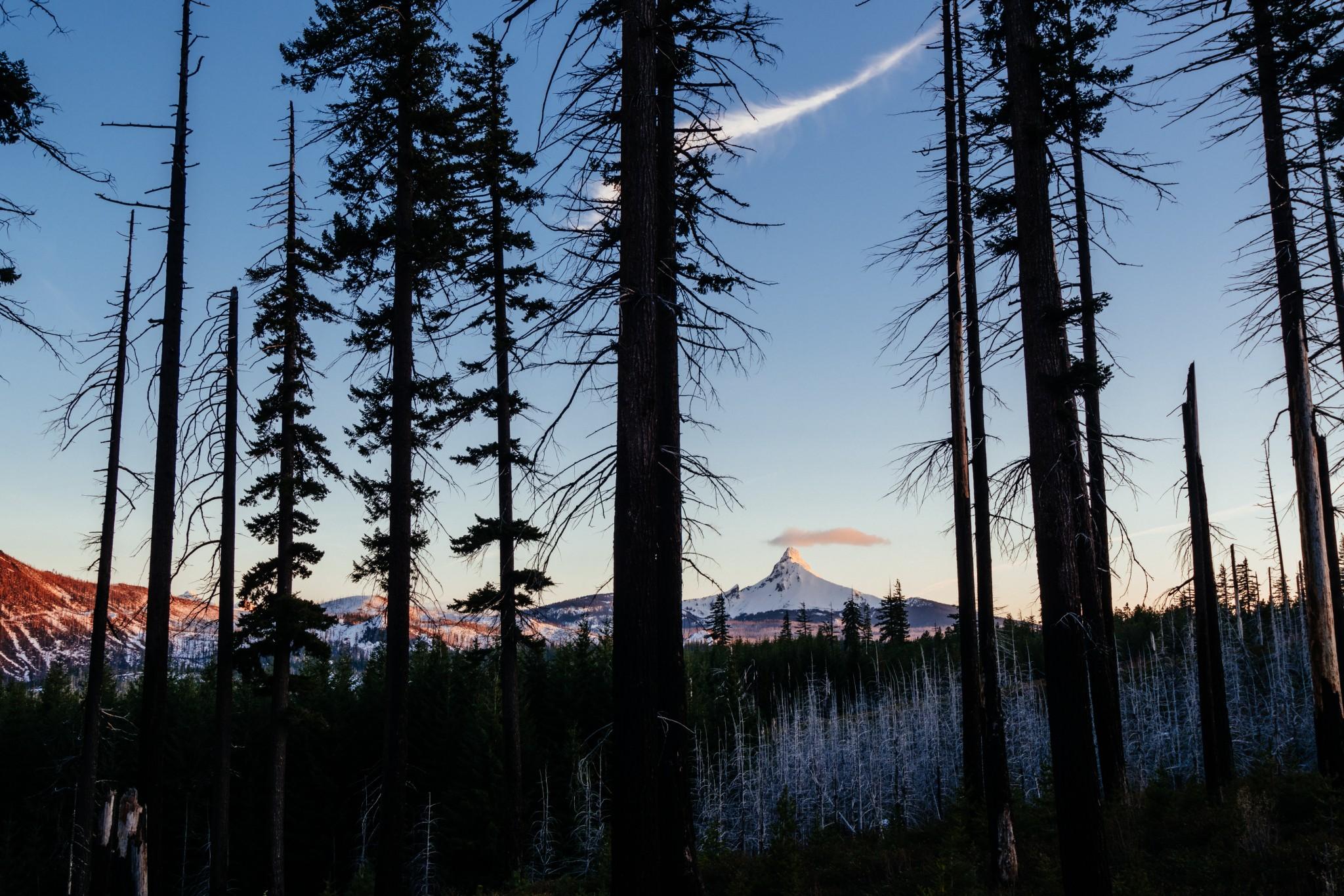 Mt.-Washington.jpg