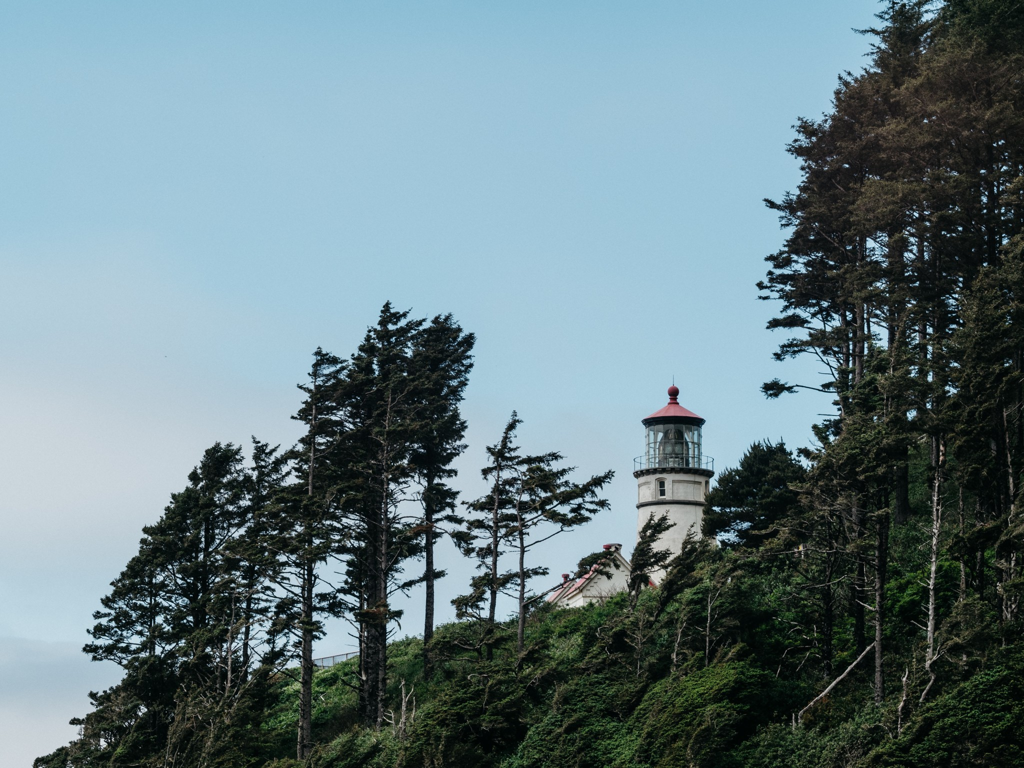 03-Heceta-Head-Lighthouse.jpg