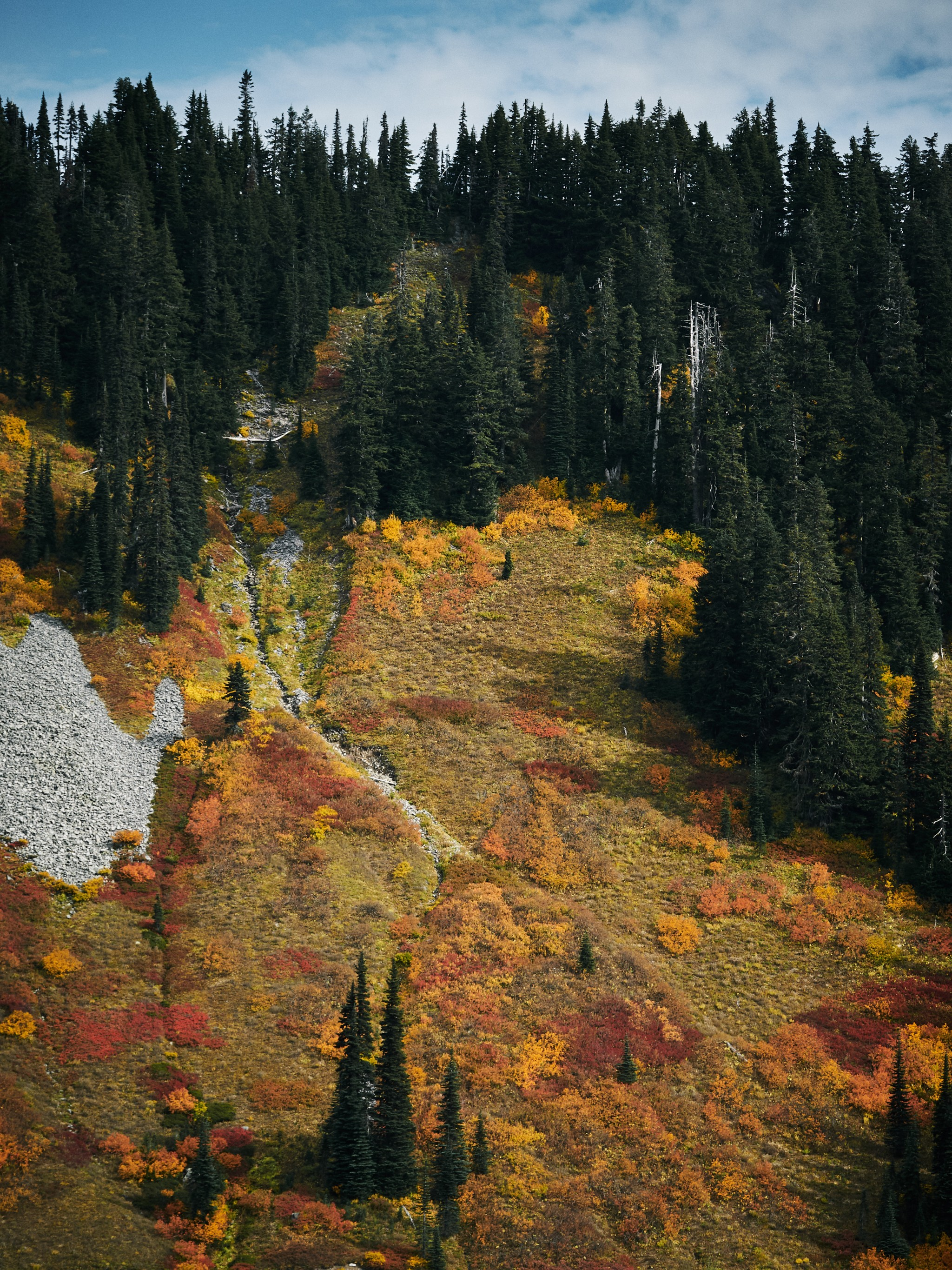 Mt-Rainier---Autumn-04.jpg