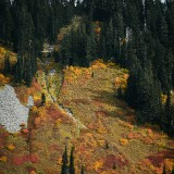 Mt-Rainier---Autumn-04