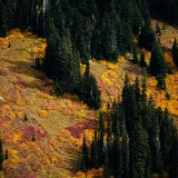 Mt-Rainier---Color-02