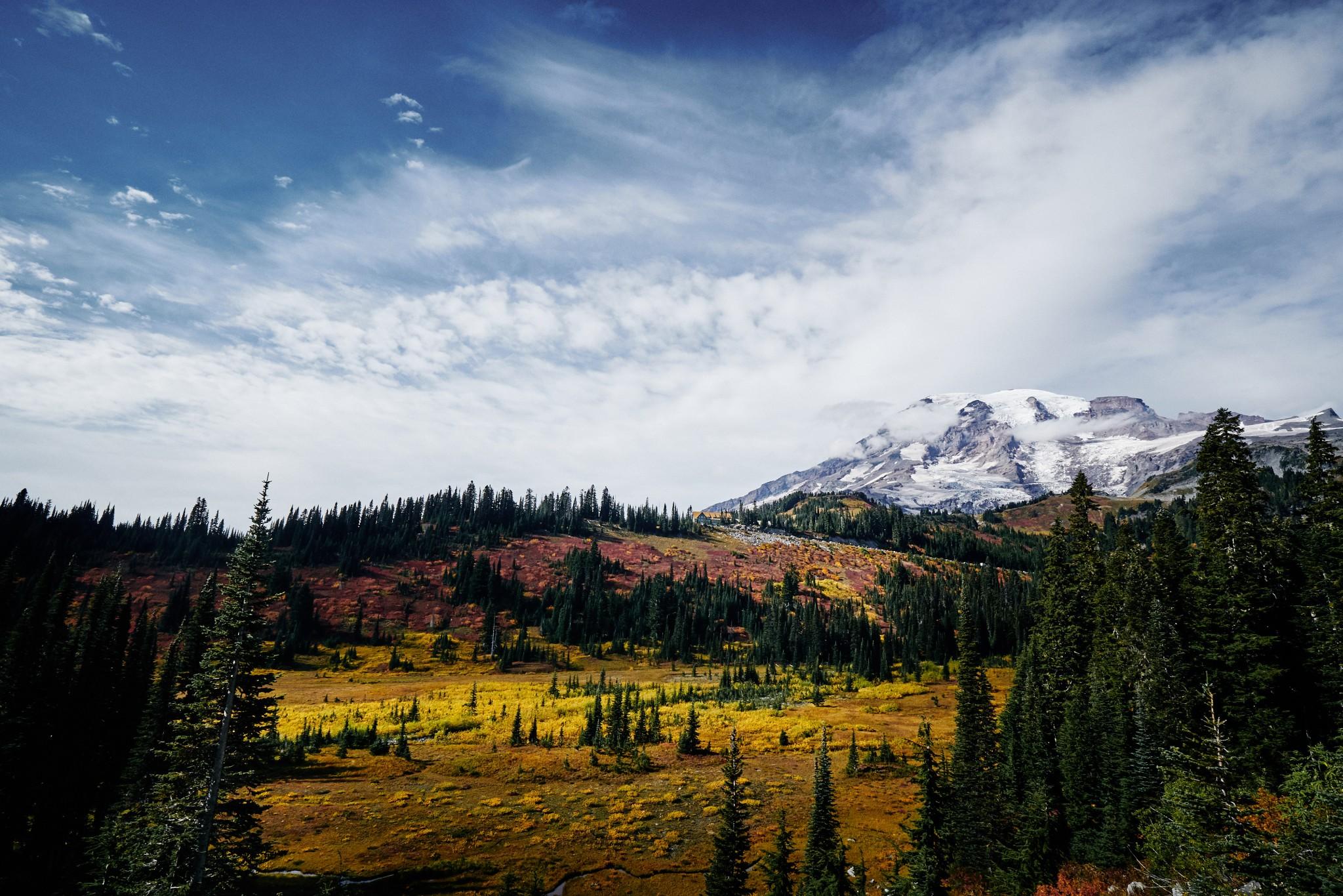 Mt-Rainier---Paradise-10.jpg