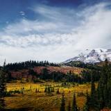 Mt-Rainier---Paradise-10