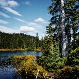 Mt-Rainier---Reflection-Lake-12