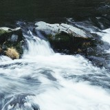 Lucia-Falls-in-Early-Fall---Silk-06