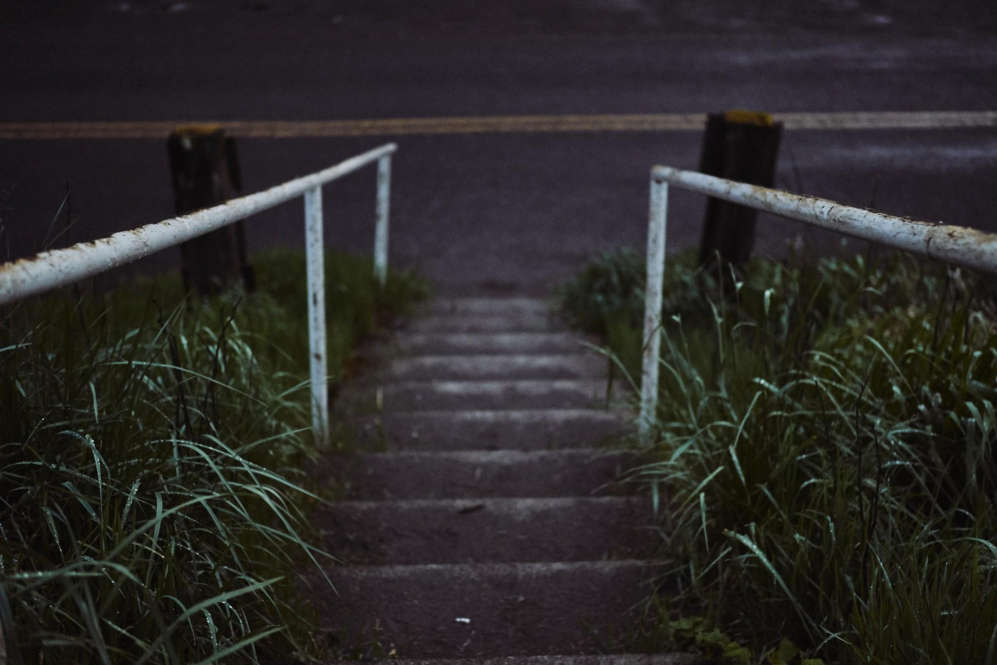 04-Path.jpg