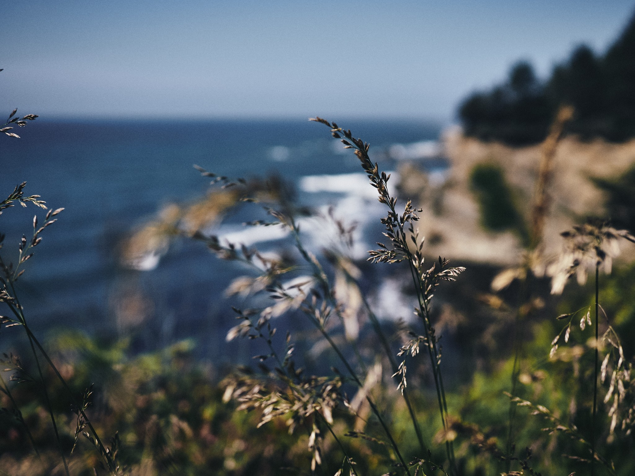 13-Wind.jpg