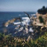 13-Wind