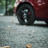 03-Oak-Leaf