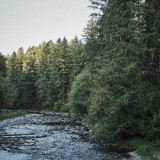 07-Lewis-River