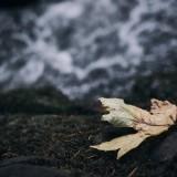 03-Fall