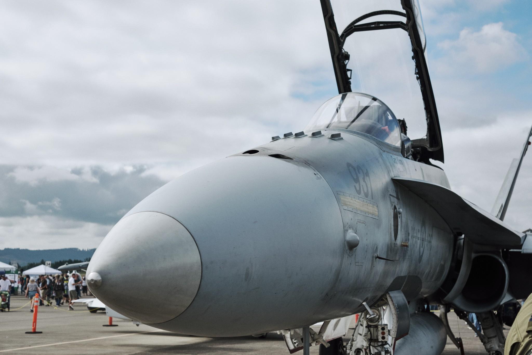 03---CF-188-Hornet.jpg
