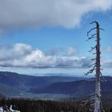 09---Oregon