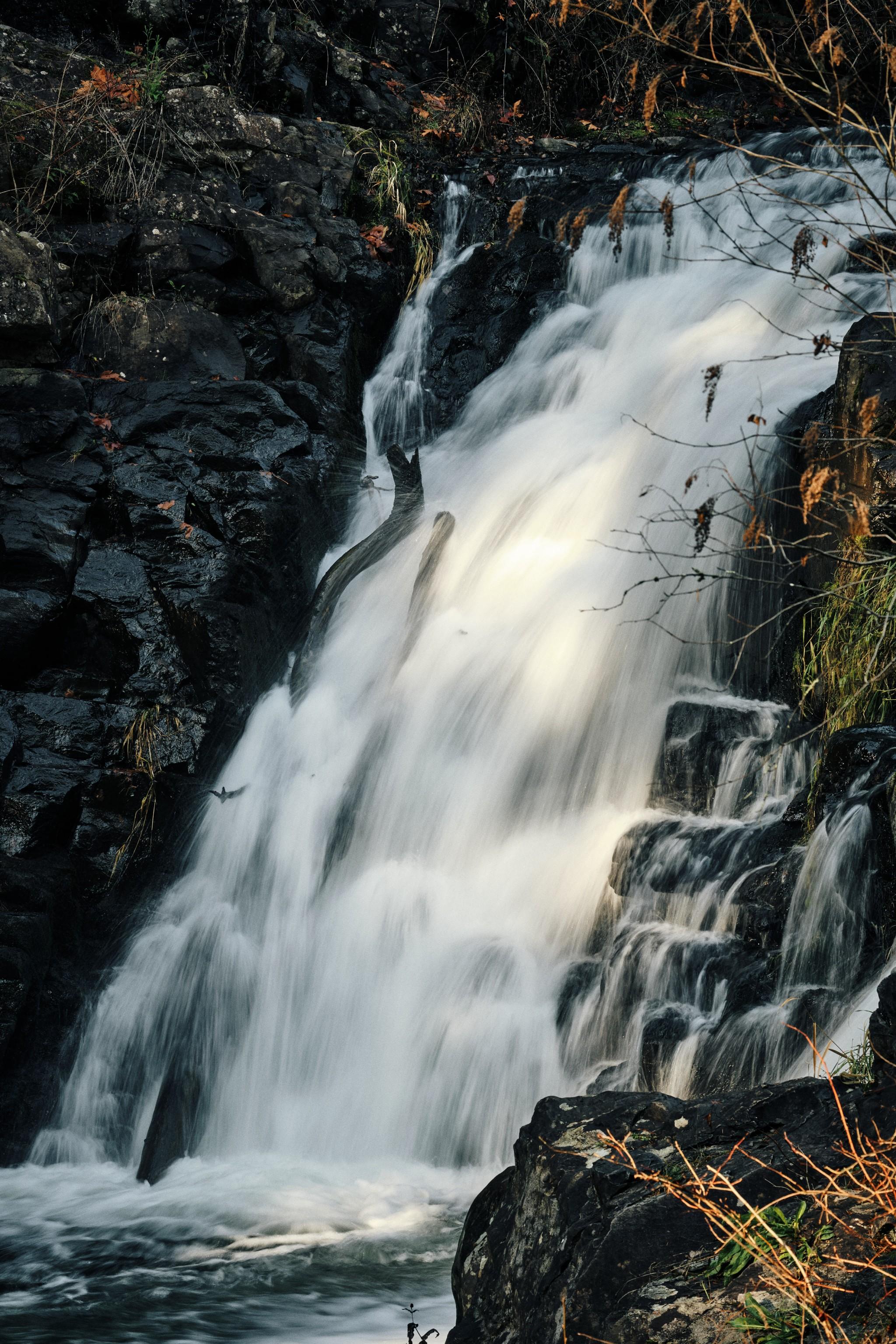 05---Yacolt-Falls.jpg