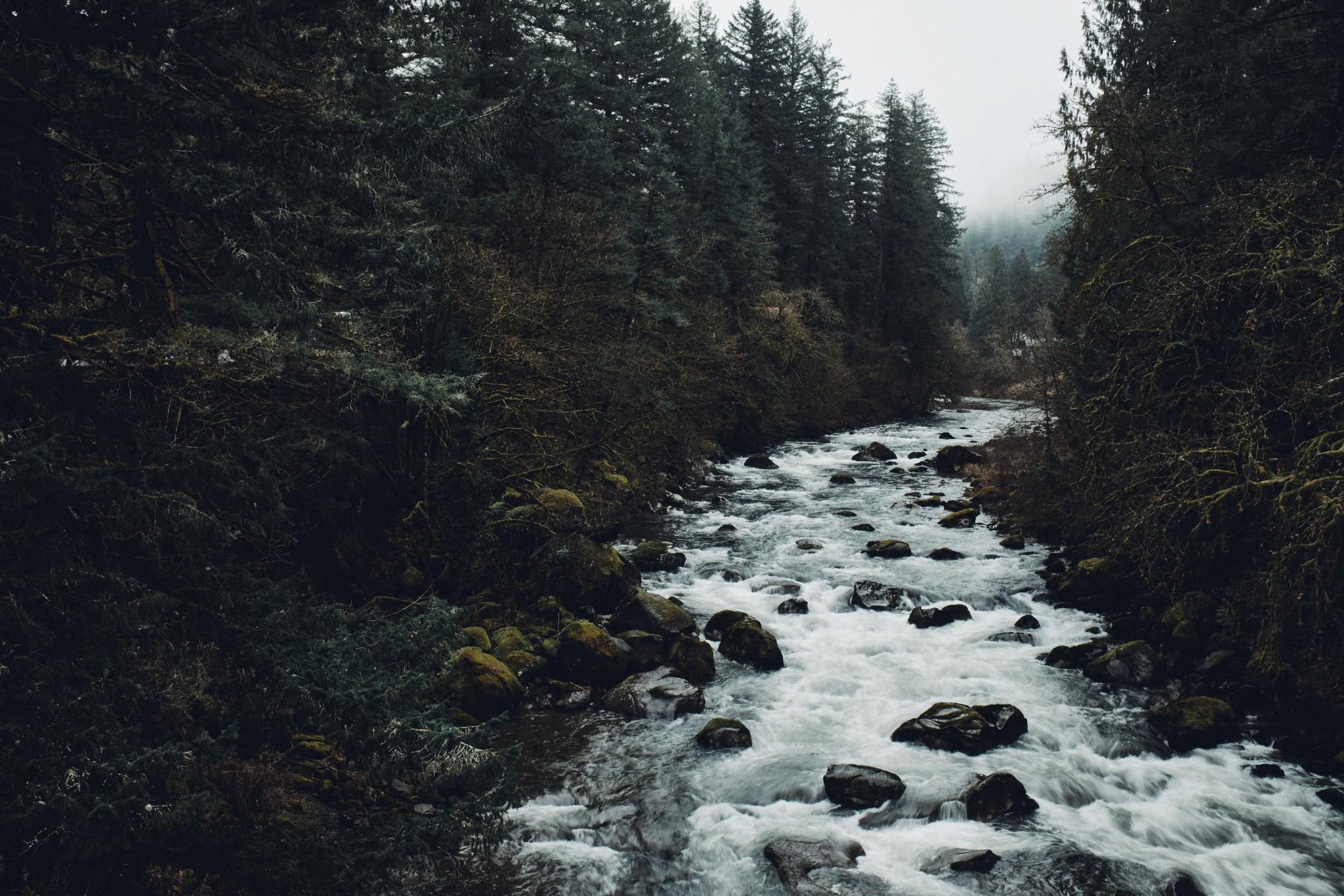 02-Lewis-River.jpg