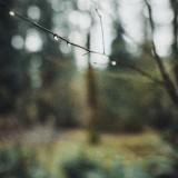 04-Drops