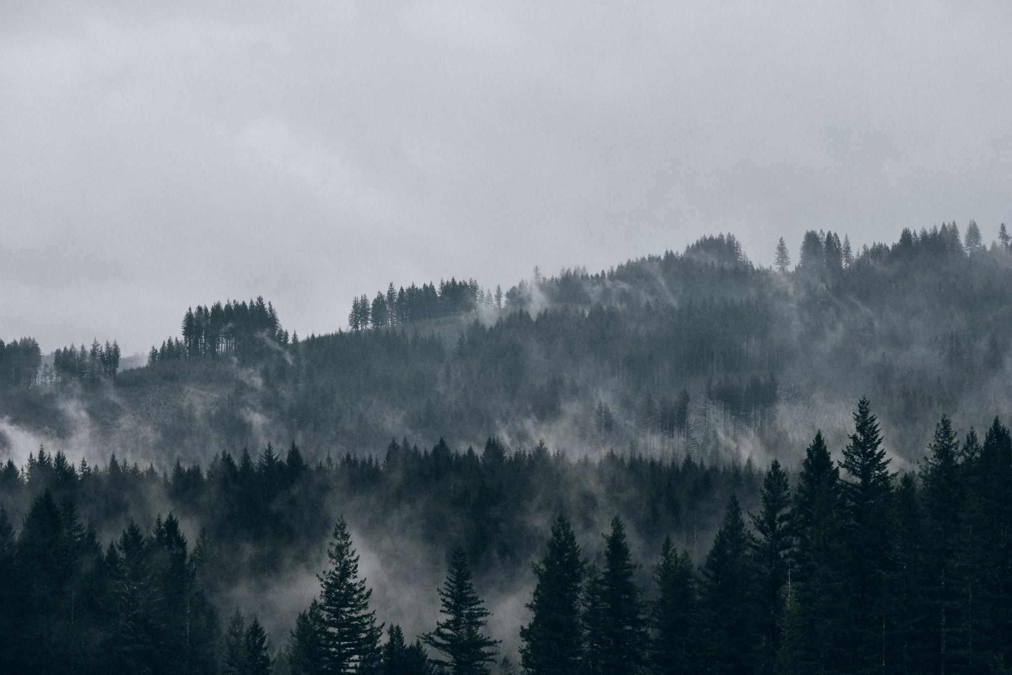 07-In-The-Cloud.jpg