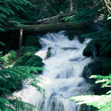 10-Big-Spring-Creek-Falls
