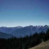 02-Mountain-Meadow