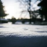 Sunlit-Snow
