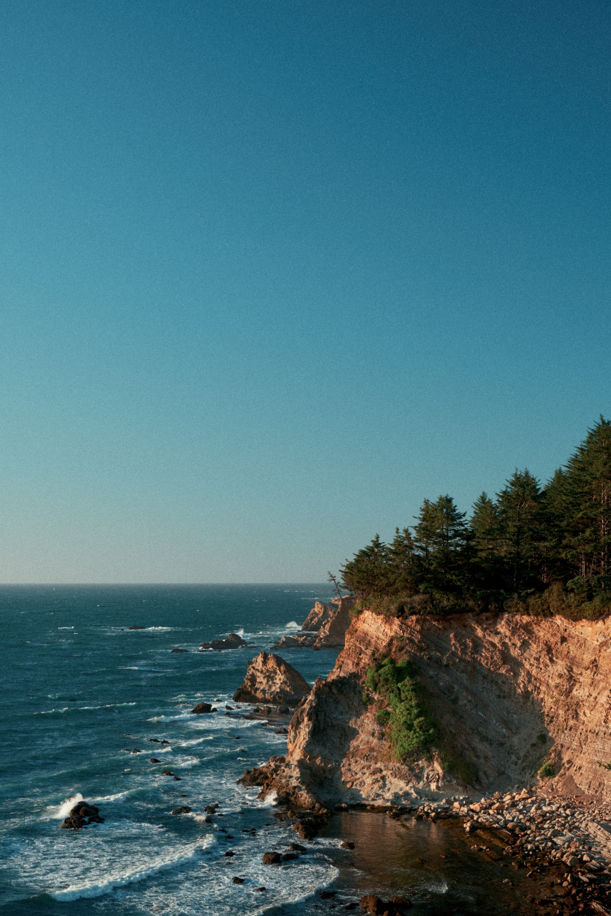 Cape-Arago.jpg