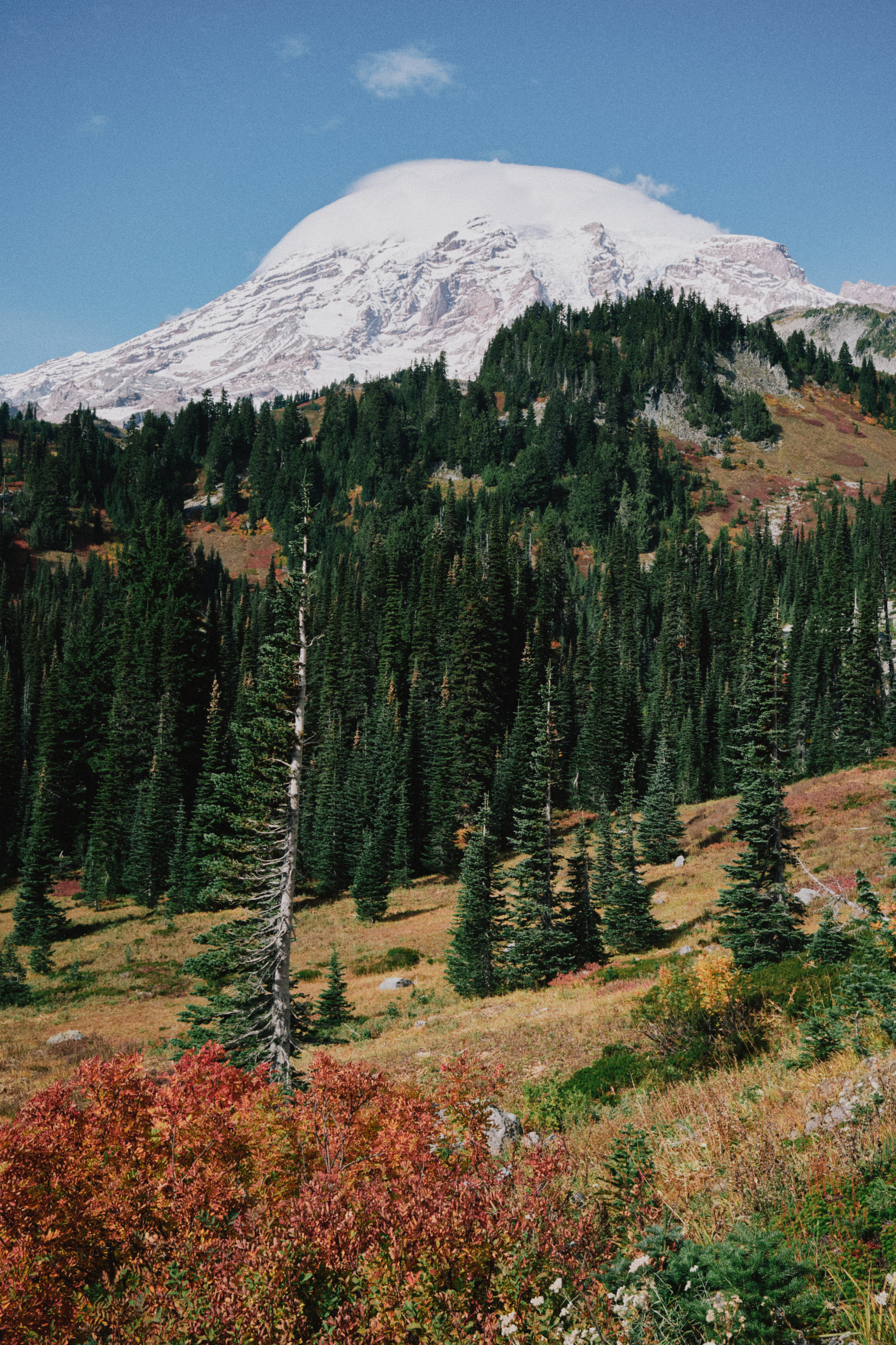 Mt.-Rainier.jpg