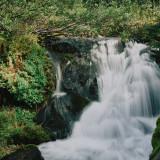Paradise-River